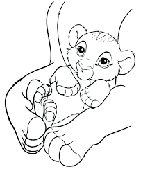 mountain lion coloring page sea lion coloring pages mountain lion coloring page baby lion coloring pages