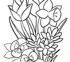 Easy Flower Coloring Pictures Flower Color Pages Butterfly And