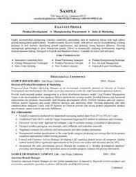 building your resume online best resume samples building your resume online 2