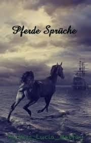 Sprüche Pferde Kapitel 10 Wattpad