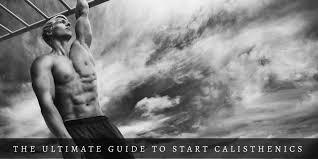 top beginner calisthenics workout plans
