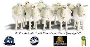serta mattress sheep. Serta Accreditations Mattress Sheep