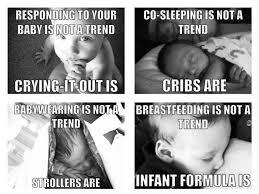Memes, the Mommy Wars, and Context | Evolutionary Parenting ... via Relatably.com
