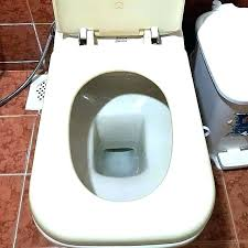 replacing toilet seat hinges how to replace a toilet seat replace toilet seat standard toilet seat
