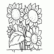 Bloemen Kleurplaten Leuk Voor Kids Nieuwe Lente Kleurplaat Bloem