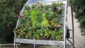 Image result for hydroponic garden