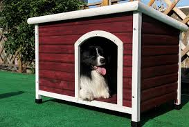 Creative Dog Houses Creative Dog House Plans