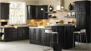 the kitchen cabinet new kitchen cupboards black cabinets wood floors low cost kitchen cabinets