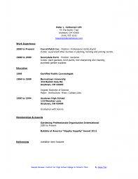 Resume Builder For Teens Resume Example