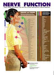 Familyspine Com Sirninger Family Chiropractic