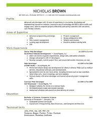 Web Developer Resume 19 Example Attractive