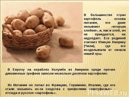 Картофель класс презентация к уроку Окружающий мир В большинстве стран картофель основа питания его даже называют вторым хлебом