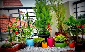 balcony gardening idea