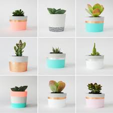 great office plants. Which Is Classed As Within Office, Plants For Your Office Desk, Great Desk Plans Free And Published At January 29th, L