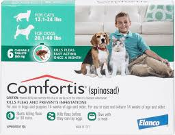 comfortis for dogs. Plain Comfortis Video For Comfortis Dogs