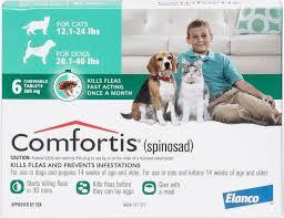 comfortis flea pill for cats. Unique Pill Video And Comfortis Flea Pill For Cats Chewycom