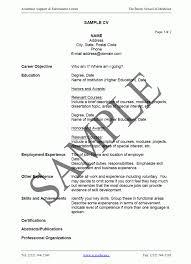 Example How To Write A Resume How To Write Cv Resume 60 Sample Nardellidesign Com A Sevte 28