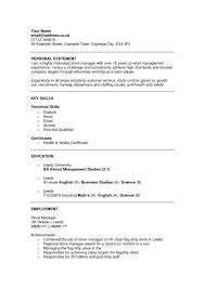Examples Of Personal Statements For Cv Cv Examples Of Personal Statements Resume Templates Design