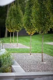 680 best Garden ideas images on Pinterest   Garden ideas ...