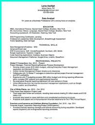Data Analyst Resume Will Describe Your Professional Profile Skills