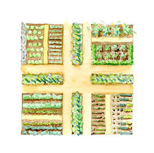 Small Picture Exellent Vegetable Garden Design Drawing Layout Ideas Best Designs
