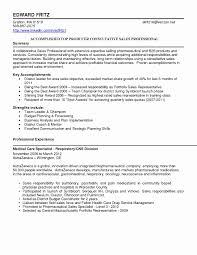 Executive Summary For Resume Examples Beautiful Resume Executive