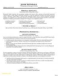 Executive Resume Template Word Extraordinary Resume Samples Doc New Executive Resume Templates Word Od Specialist
