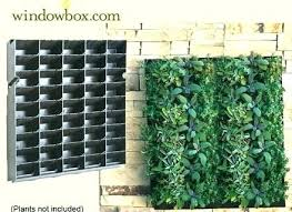 succulent wall garden kit herb vertical medium size of living outdoor pods with shower kids room indoor vertical garden kit