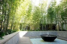 Small Picture Garden Design Garden Design with bamboo plants landscape designs