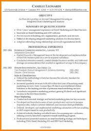 6 Summary Resume Samples Paige Sivierart