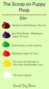 Stool Odor Chart Puppy Poop The Good The Bad And The Smelly Read Your