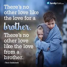 Top 40 Cute Brother Quotes From Sister Life Quotes Humor Impressive Picture For Brother Sister