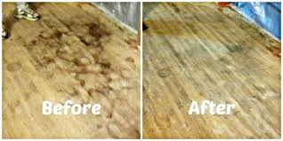 how to get urine stains out of carpet contemporary how to get old dog urine stains how to get urine stains out of carpet how to remove