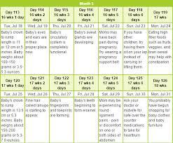 Pregnacy Clander Pregnancy Calendar For Ideas Of Important Dates In Pregnancy Babie