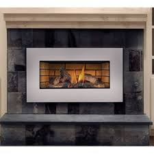 napoleon gi3600 4nsb roxbury basic natural gas fireplace insert with glass