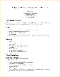 It Resume Entry Level 14 Entry Level It Resume No Experience Payroll Slip