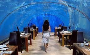 hydropolis underwater resort hotel. Luxury Underwater \u2013 The Hydropolis Hotel Resort T