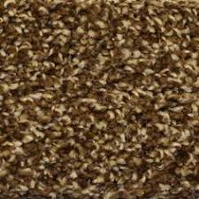 special buy truly soft i color southern road 12 ft carpet hd051