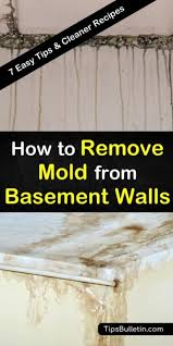 remove mold from basement walls