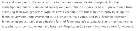 instruction for a polite feminist illimitable men shit all you ve actually done is confirm this part of the essay by making this whole thing about you