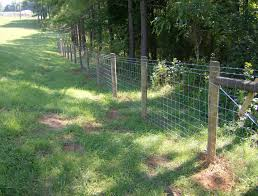 wire farm fence gate. Large Size Of Wire Fencing:wire Fencing Larry Chattin Sons Farm Barbed Fencingfarm Gate Fence