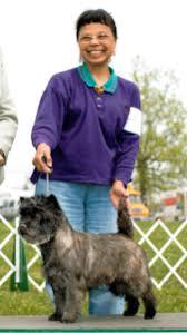 InfoDog - The Dog Fancier's Complete Resource for information ...