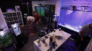 The Aquatic Design Centre Tetra And The Aquatic Design Centre Makes An Aquatic Installation At Old Street Underground Station