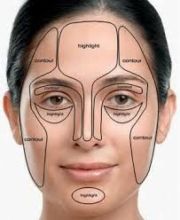 Heres A Diagram For Contouring Also Place Highlighter Over