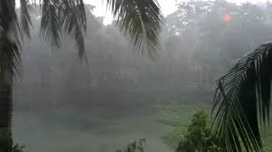 Image result for monsoon rain images