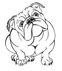 bulldog clipart. Delighful Clipart English Bulldog Vector Illustration Throughout Bulldog Clipart