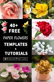 Small Paper Flower Templates 40 Paper Flowers Free Templates And Tutorials How To Make Paper