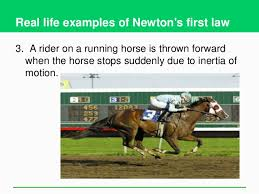 newton 39 s first law real life examples. 18. newton 39 s first law real life examples
