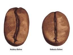 Картинки по запросу кофе арабика