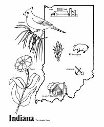 Small Picture coloring pages indiana peony coloring page downloads Dzrleathercom
